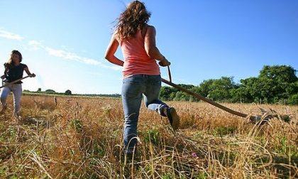 Due incontri per i giovani agricoltori con Confagricoltura