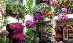 """Domenica la premiazione di """"Balconi fioriti"""""""