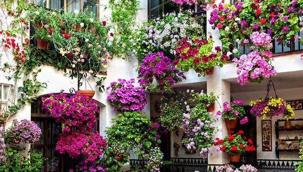 Giardini in fiore giardinaggio giardini fioriti