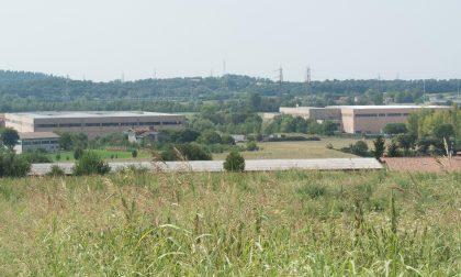Biogas, Castiglione fa appello al Consiglio di Stato