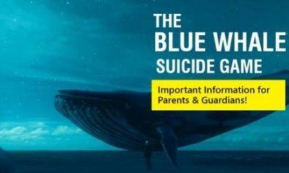 Blue Whale Brescia, tante segnalazioni, ma tutte bufale