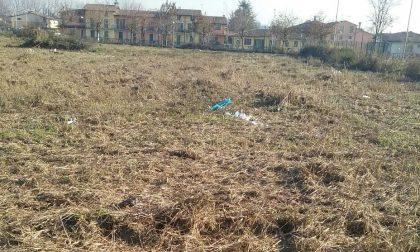 Calcinatello, pulito il parco Marcolini dopo mesi di segnalazioni