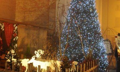 Carpenedolo, rubate le luci dell'albero di Natale