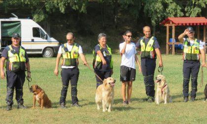 Castiglione - Grande partecipazione al Dog Day