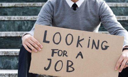 Disoccupazione giovanile in aumento, mancanza di lavoro o di voglia?