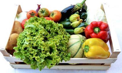 Frutta e verdura in regalo, ecco la nuova truffa