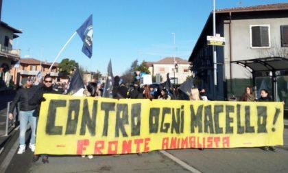 ITALCARNI, LA PROTESTA DEI CITTADINI - FOTO - VIDEO