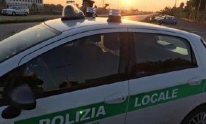 Gira con la patente scaduta e senza assicurazione, vede la Polizia e scappa: denunciato