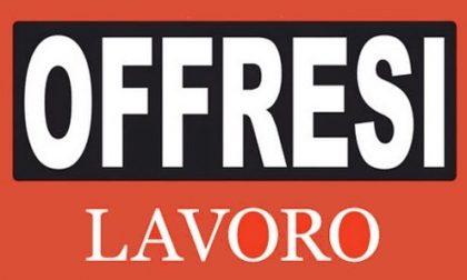 Offresi lavoro come gelataio a Brescia