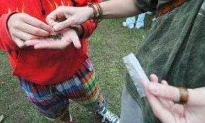 Marijuana tra i rom, denunciato minore