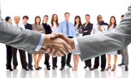 Job Week: Asola nella rete mantovana degli appuntamenti