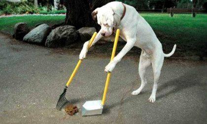 «Raccogliete la popò del cane o vi multiamo»