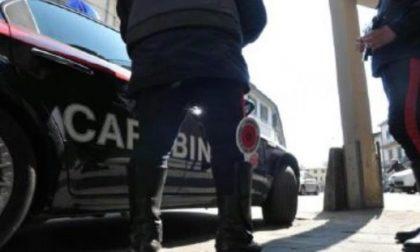 Reati, tutti i dati nel bilancio dei carabinieri