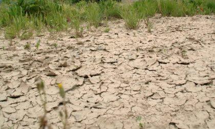 SICCITA': la Lombardia verifica le riserve idriche