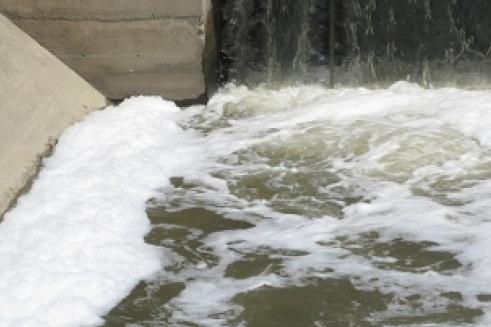 Schiuma e moria di pesci fiume inquinato brescia for Pesci di fiume