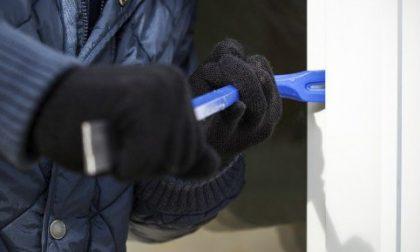 Ladri in azione a Paratico: rubati 800 euro in piadineria