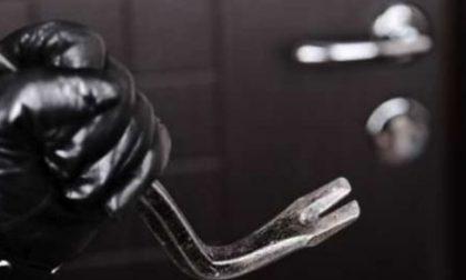 """Sicurezza, Bordonali: """"Il 97% dei furti in appartamento rimane impunito"""""""