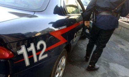 Spaccata in una attività, i malviventi trovano solo 15 euro
