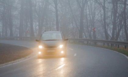 Tempo da lupi per il ponte, nebbia e freddo.