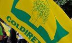Coldiretti: nasce Filiera Italia alleanza agricoltura e industria