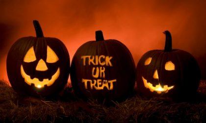 A Pavone niente botti per Halloween
