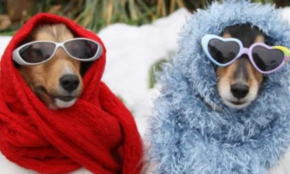 10 cibi per non avere freddo