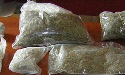 127 chili di droga: arrestati alle porte del lago