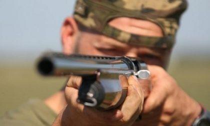 Raid contro i capannoni di caccia: devastazione a Cazzago