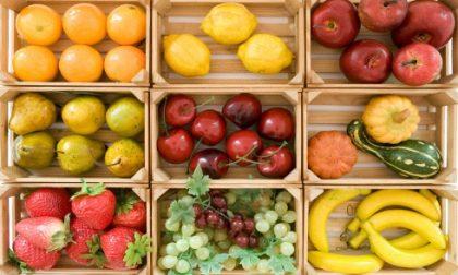 Attenzione alla truffa della frutta gratis