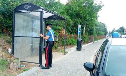 Bardolino, due turisti distruggono la fermata del bus