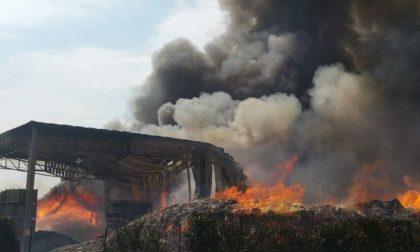 Colonna di fumo, incendio in azienda