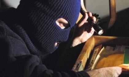 Furto in abitazione: ladro di Bibbiano incastrato dal Dna