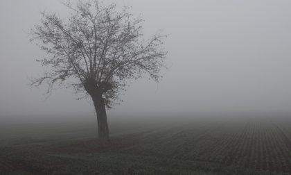 Meteo, tempo stabile ma tanta nebbia