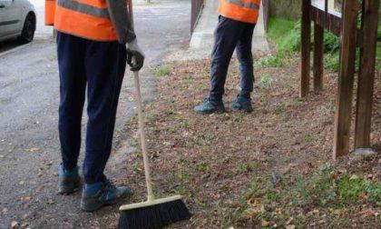 Profughi al lavoro per pulire