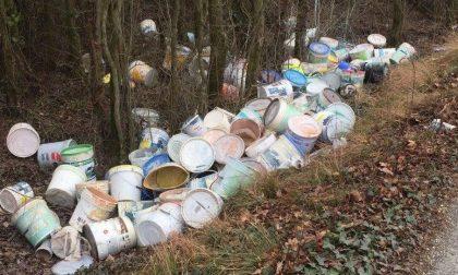 Mozione in Consiglio comunale a Desenzano contro l'abbandono di rifiuti