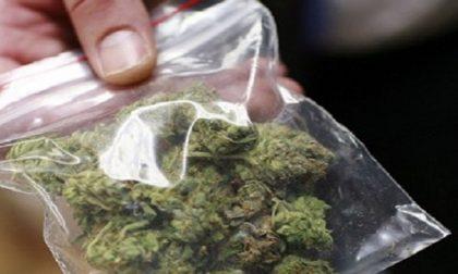 Sirmione: incendio a causa della marijuana