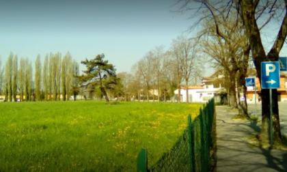 Strane polpette trovate al parco faunistico di Calvisano