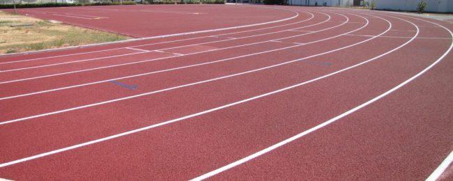 Centro sportivo custode cercasi per lo stadio Azzurri