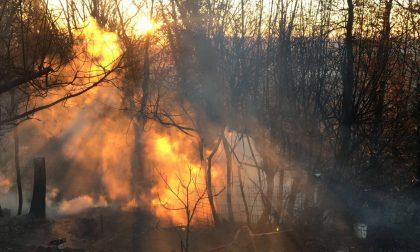 Incendio boschivo sul monte di Nigoline