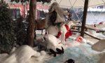 Nuovi atti vandalici contro le installazioni di Natale