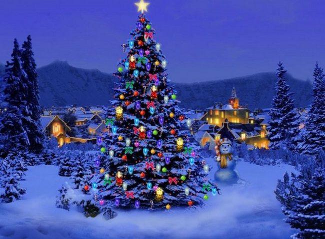 Immagini Di Natale Alberi.Alberi Di Natale Ecco Come Salvarli Brescia Settegiorni