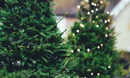 Tante proposte per il Natale di Corte Franca