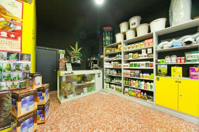 Negozi cannabis boom in Lombardia: a Brescia sono 5