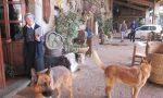 Processo Shalom A maggio sopralluogo alla comunità di Palazzolo