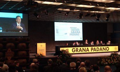 Grana Padano in ottima forma: cresce del 16%