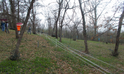Taglia il bosco sottoposto a vincolo paesaggistico scatta la denuncia