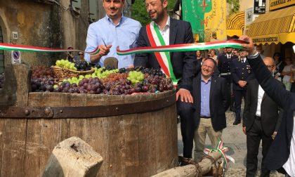 Taglio del nastro alla 69esima Fiera del Vino di Polpenazze