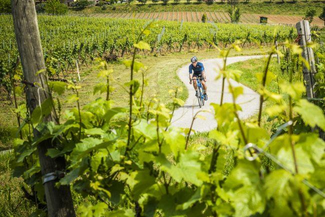 giro d'italia franciacorta vigne bicicletta