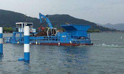 Da Regione un tesoretto per la tutela e il risanamento delle acque del Sebino