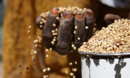 Da Borgo San Giacomo un granaio per l'Africa